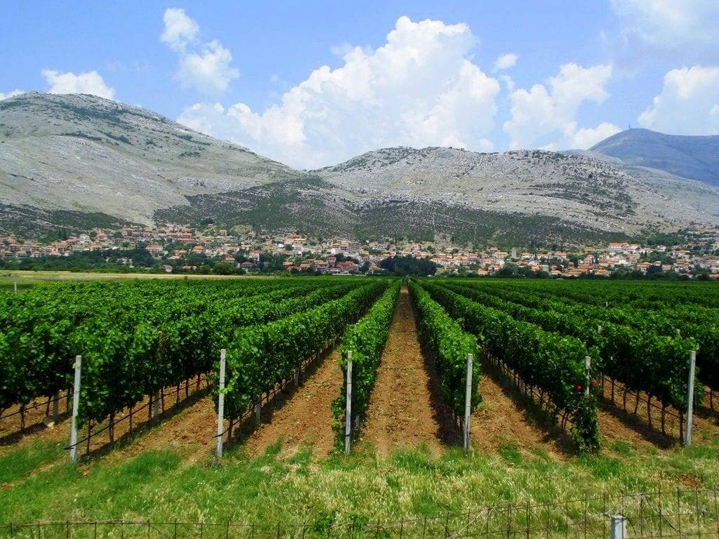 Монастырь Тврдош экскурсия в боснию
