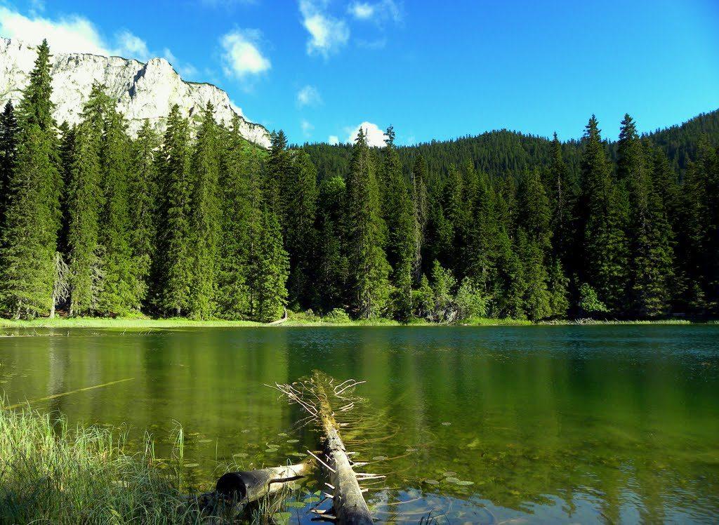 национальный парк Дурмитор озеро
