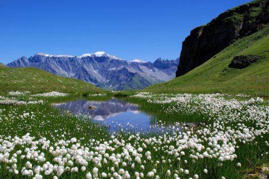 экскурсия маленькая швейцария