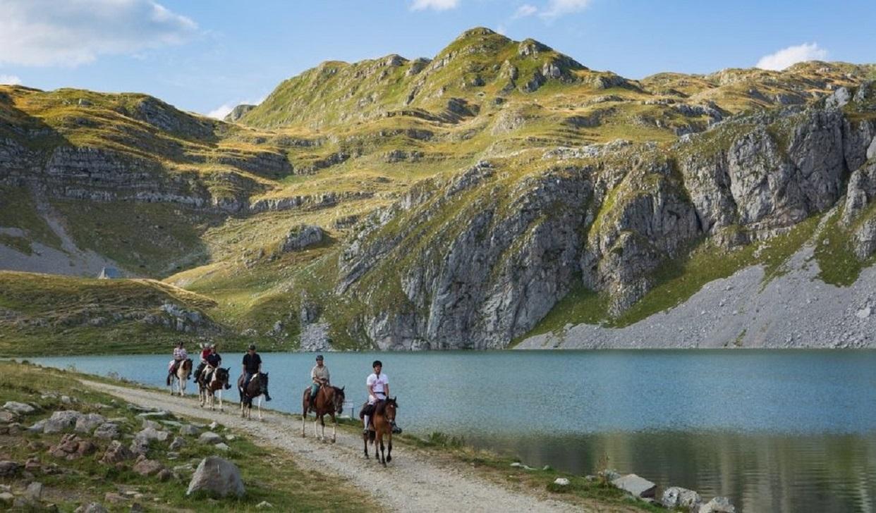 лошади черногория