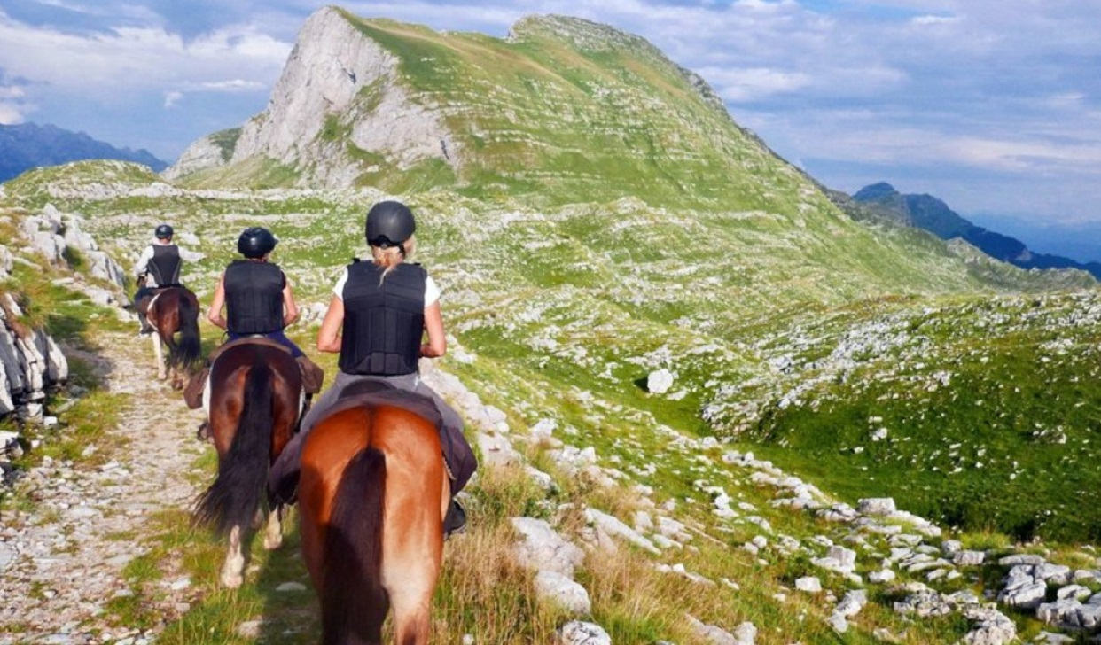 корпоратив на лошадях черногория