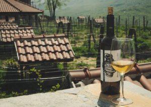 гастротур в черногории