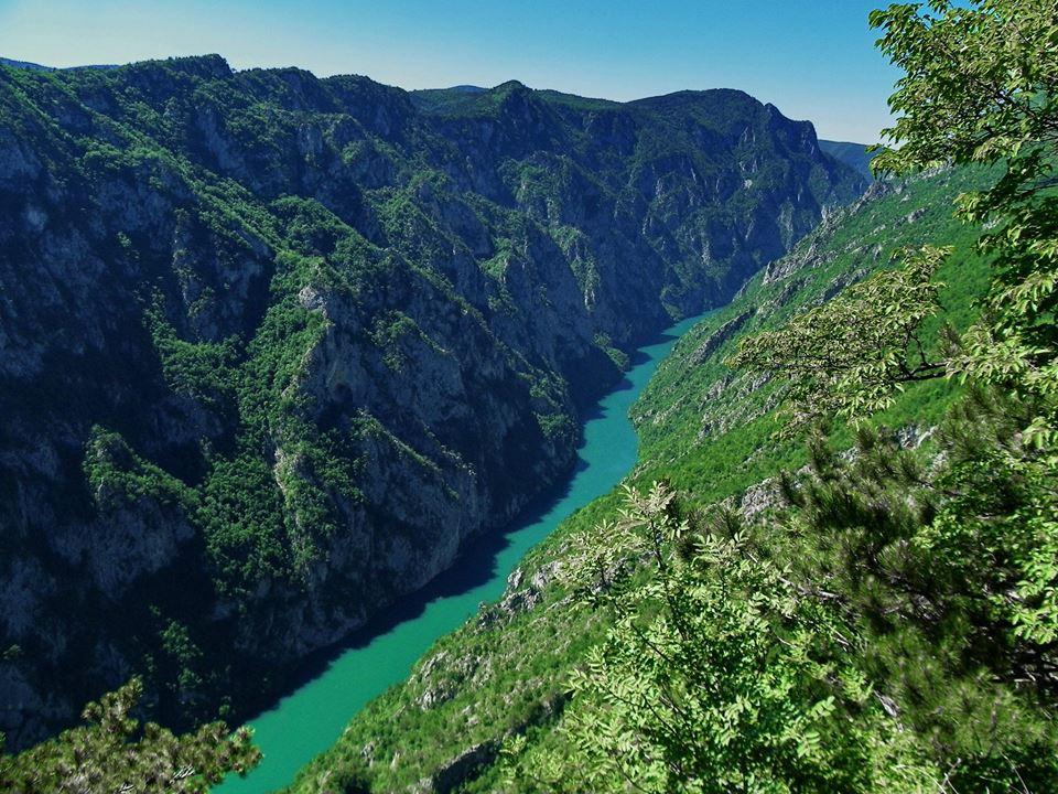 Виды Черногории Тара
