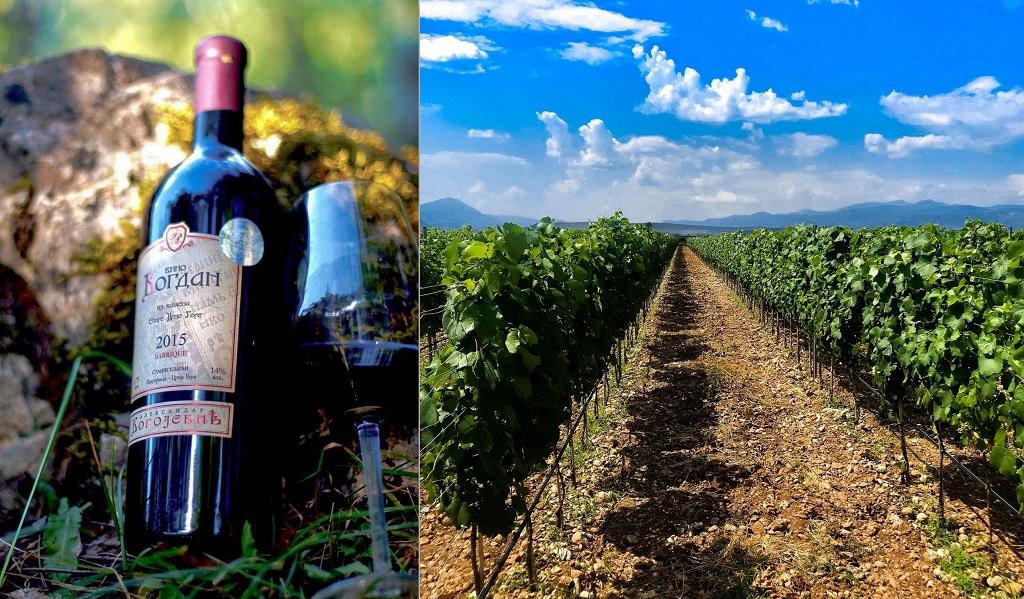Экскурсии винодельни Черногории